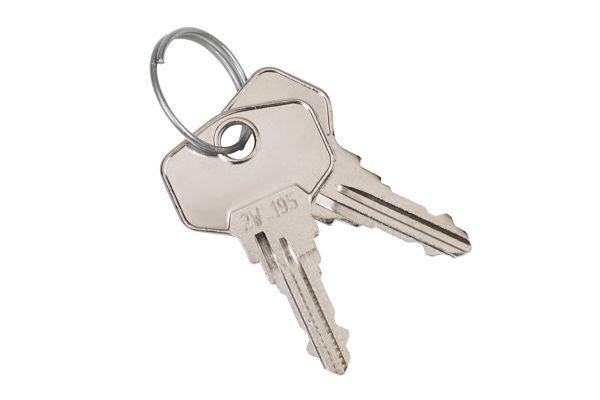 Wagner EWAR 924455 sleutels (2 stuks) voor dispensers >1990